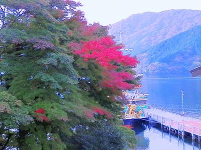 芦ノ湖紅葉